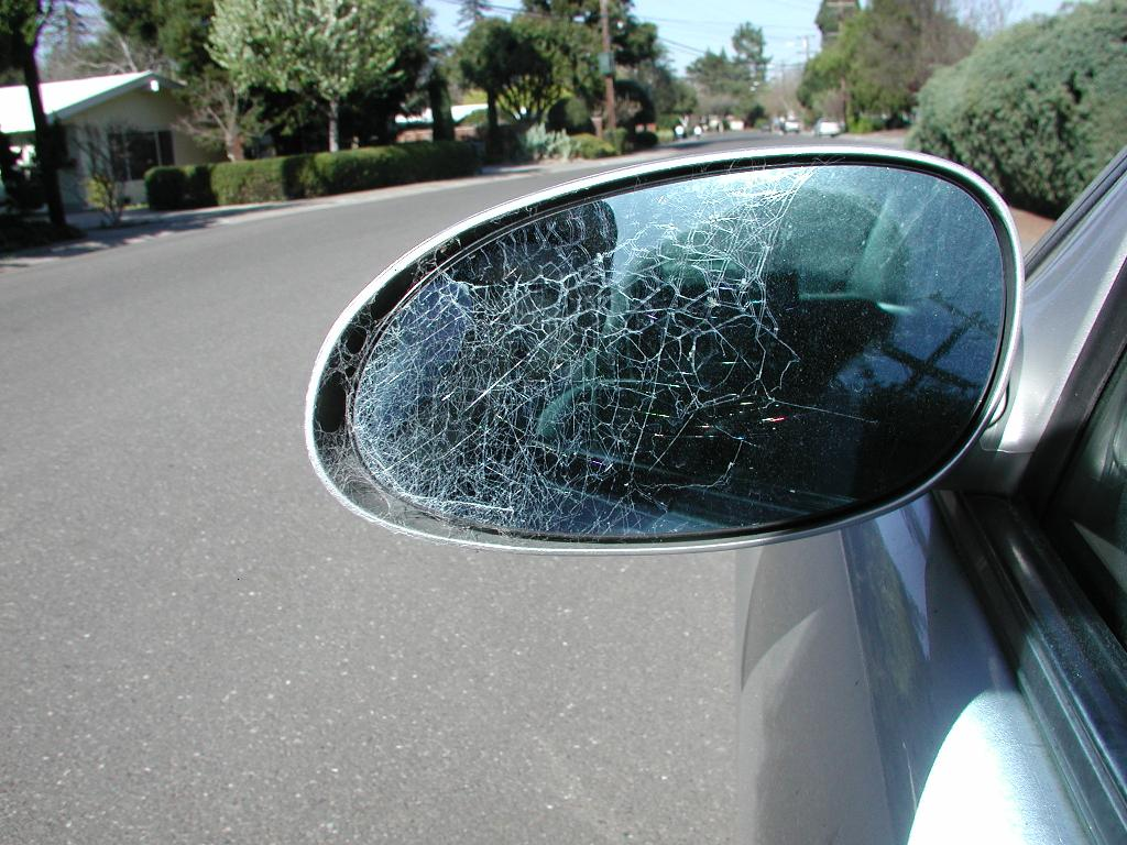 Imagine A SPIDER WEB on the rear view mirror of your car!